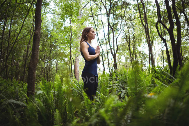 Женщина, занимающаяся йогой в лесу в солнечный день — стоковое фото