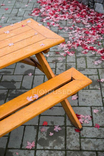 Banco vazio com folhas caídas ao seu redor na calçada — Fotografia de Stock