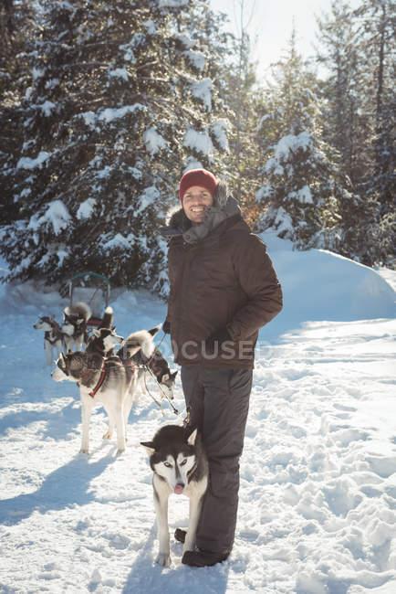 Homem de pé com um grupo de cães husky siberiano — Fotografia de Stock
