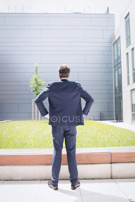 Rear view of a businessman standing with hands on hip outside office building — Stock Photo