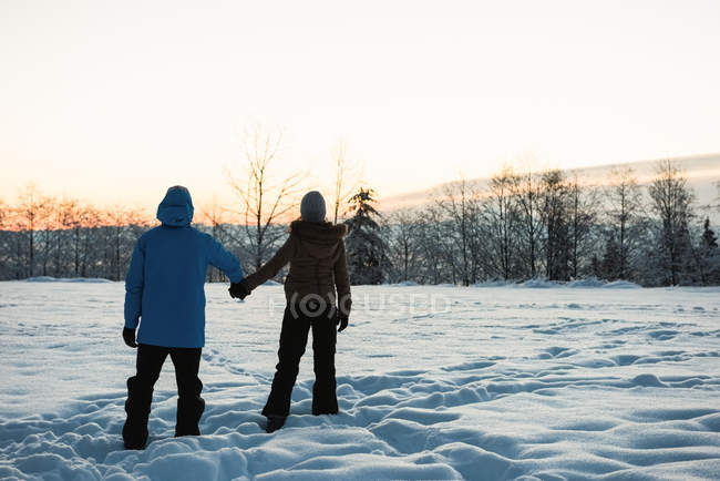 Rear view of couple standing and holding hands on snowy landscape — Stock Photo