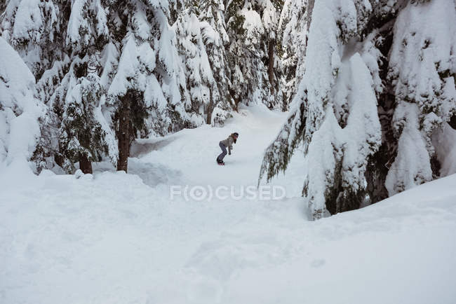 Woman snowboarding through snow covered pine trees on mountain — Stock Photo