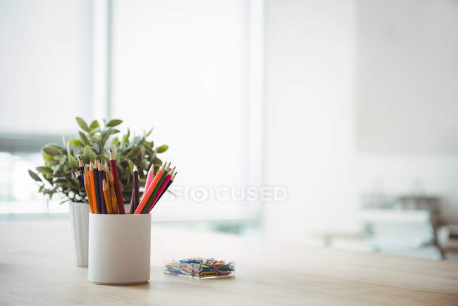 Pen holder and pot plant on table in office — Stock Photo