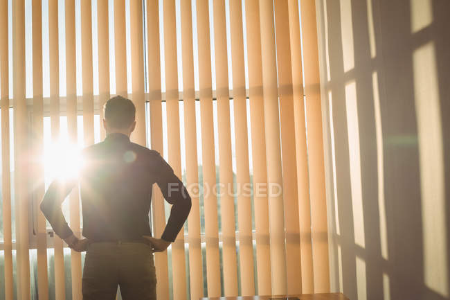 Rear view of man standing with hands on hips near window blinds — Stock Photo