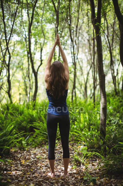 Задний вид женщины, выполняющей упражнения на растяжку в лесу — стоковое фото