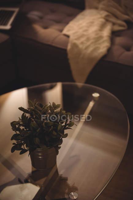 Primo piano di piccolo vaso sul tavolo vetro nel soggiorno a casa — Foto stock
