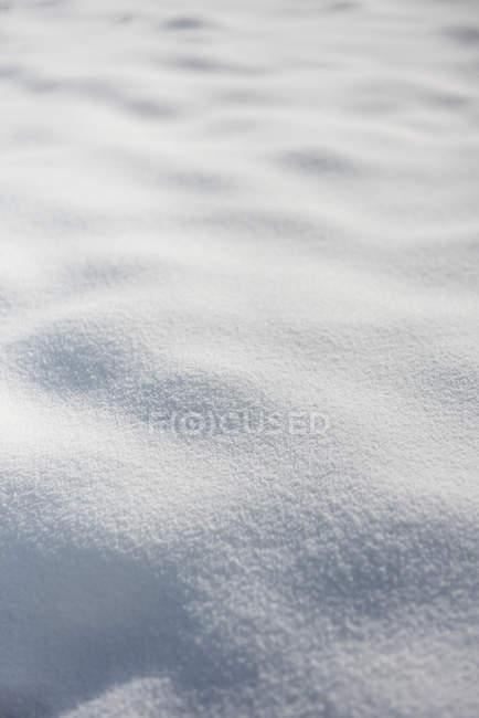 Limpa neve cobriu paisagem, quadro completo — Fotografia de Stock