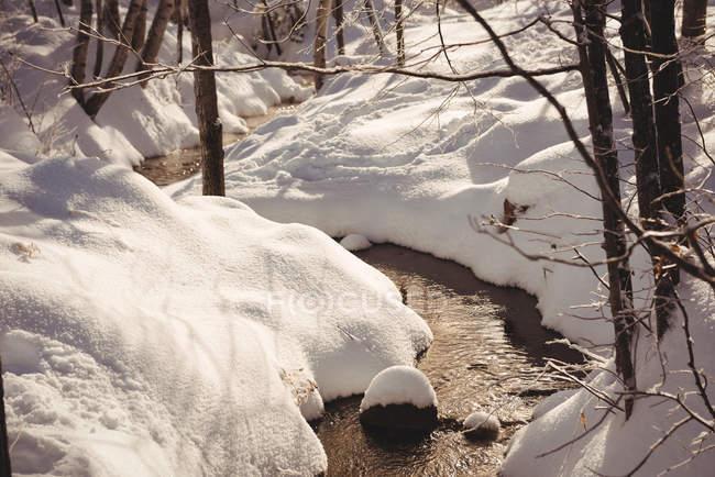 Ruscello che scorre con neve su entrambi i lati durante l'inverno — Foto stock