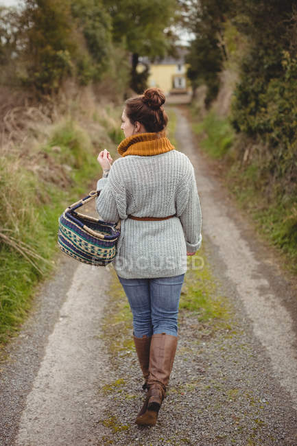 Задний вид женщины с корзиной, идущей по дороге между полями — стоковое фото