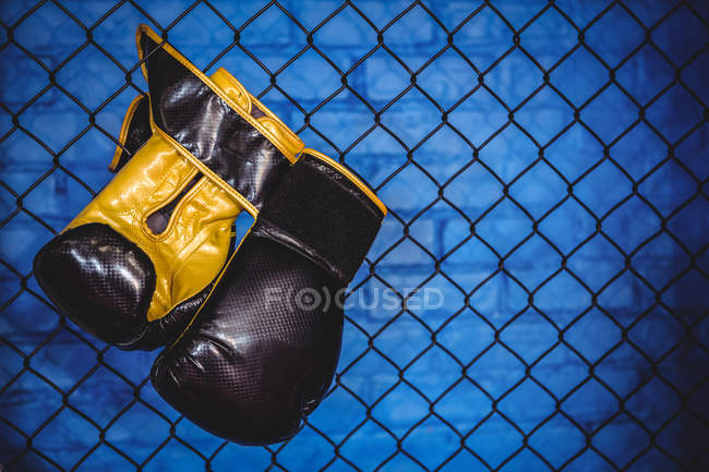 Pair of boxing gloves hanging on wire mesh fence in fitness studio — Stock Photo
