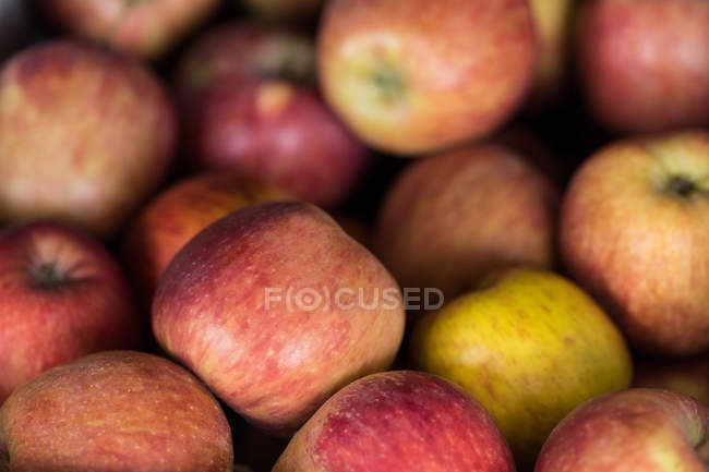 Close-up of ripe red apples — Stock Photo