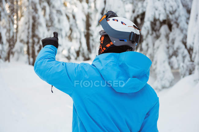 Rear view of skier pointing at a distance on snow covered landscape — Fotografia de Stock