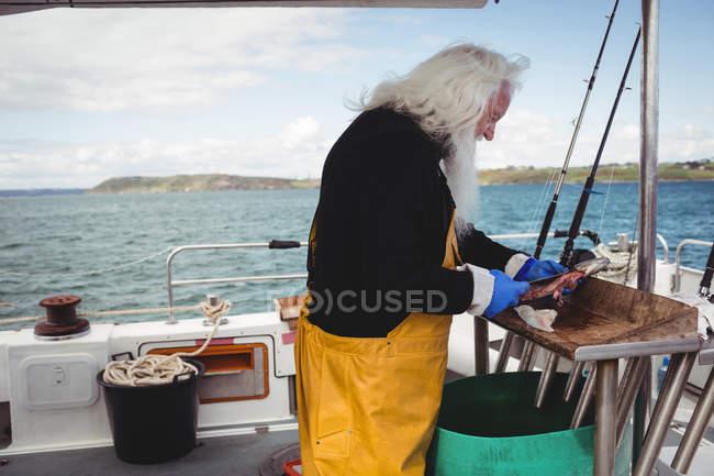 Senior Fischer filetiert Fische im Boot — Stockfoto