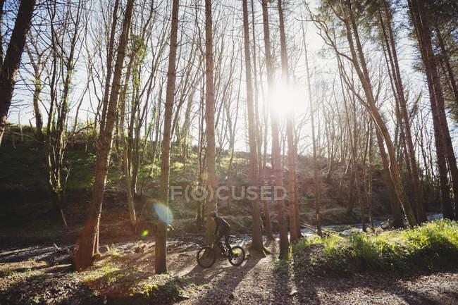 Гора байкер їзда серед дерев у лісі — стокове фото