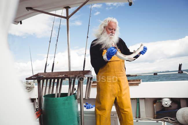 Fischer hält Fisch auf Boot — Stockfoto