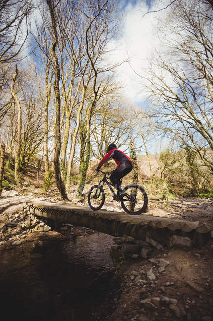 Rear view of mountain biker on footbridge over stream in forest — Stock Photo