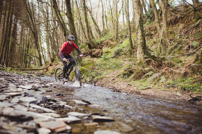 Mountain biker in stream amidst trees at forest — Stock Photo