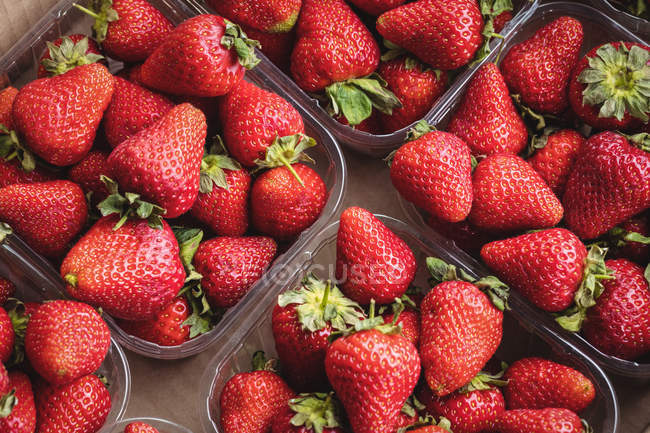Close-up of strawberries in plastic boxes at supermarket — Stock Photo