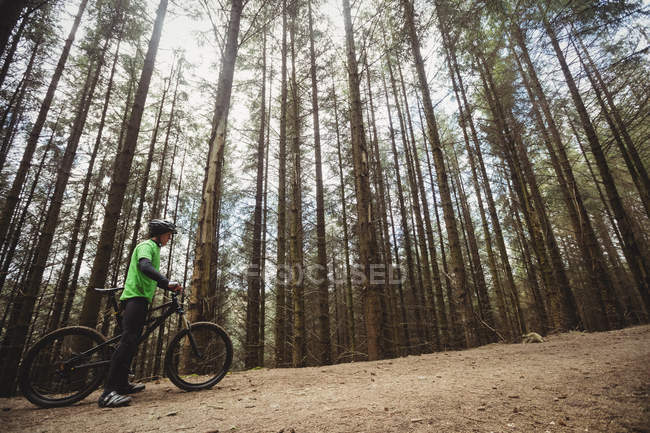 Low angle view of mountain biker on dirt road against trees in forest — Stock Photo