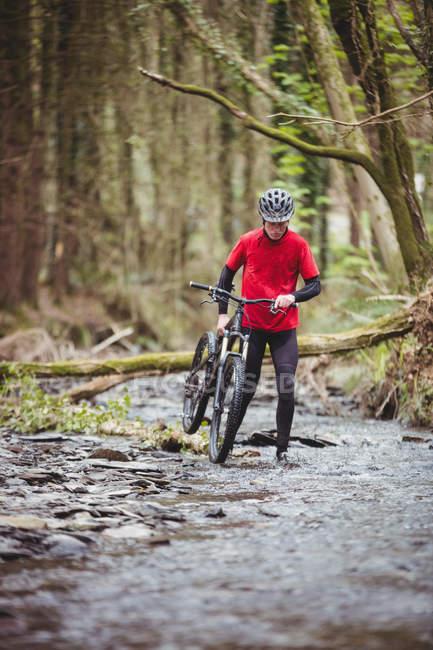 Фронтальний вид байкер проведення велосипед під час прогулянки в потік при лісів — стокове фото