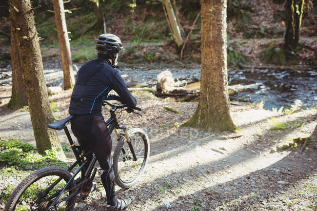 Rear view of mountain biker riding towards stream in forest — Stock Photo