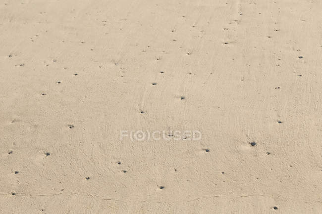 Close up grains of sand on the beach — Stock Photo