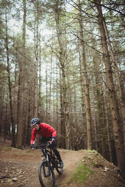 Mountain bike a cavallo contro l'albero nella foresta — Foto stock