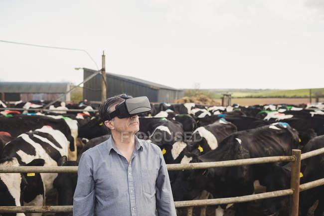 Agricultor usando simulador de realidade virtual por cerca no celeiro — Fotografia de Stock