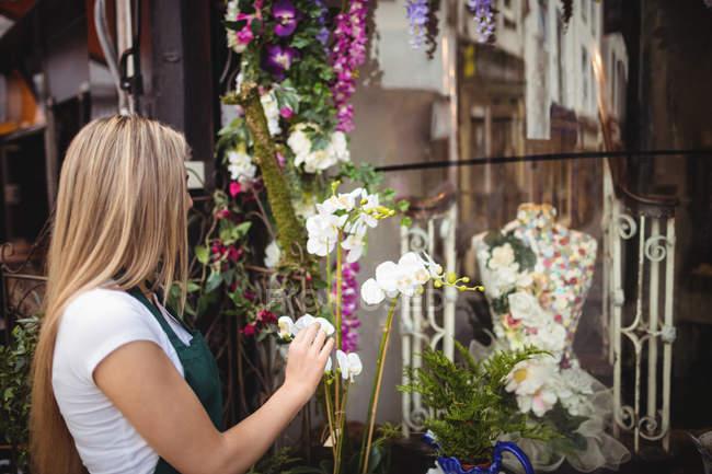 Female florist arranging flowers in vase at her flower shop — Stock Photo