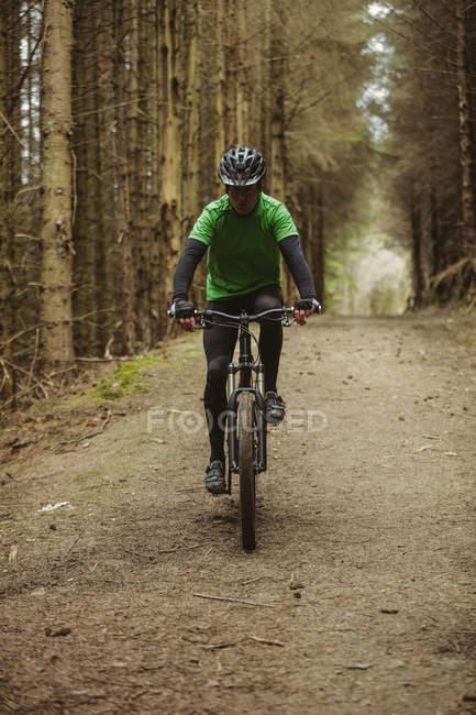 Вид спереди на горного байкера, едущего по проселочной дороге среди деревьев в лесу — стоковое фото