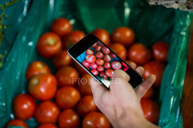 Cropped image of man taking photo of tomatoes in display in organic section at supermarket — Stock Photo