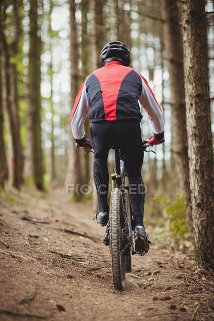 Rear view of mountain biker riding on dirt road in forest — Stock Photo