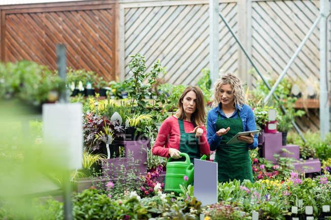 Две флористки используют цифровой планшет в садовом центре — стоковое фото