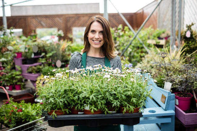 Portrait of female florist holding tray of potted plants in garden centre — Stock Photo