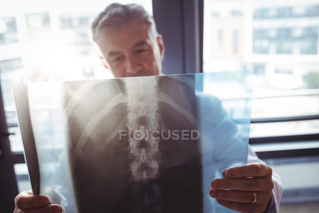 Доктор, изучение рентген в больнице — стоковое фото