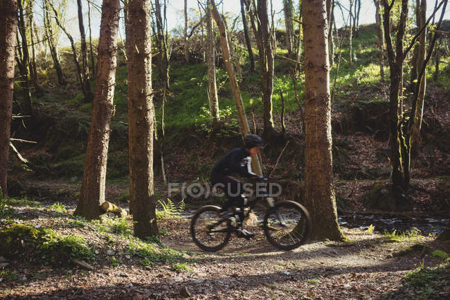 Mountain biker riding bicycle amidst trees in forest — Stock Photo
