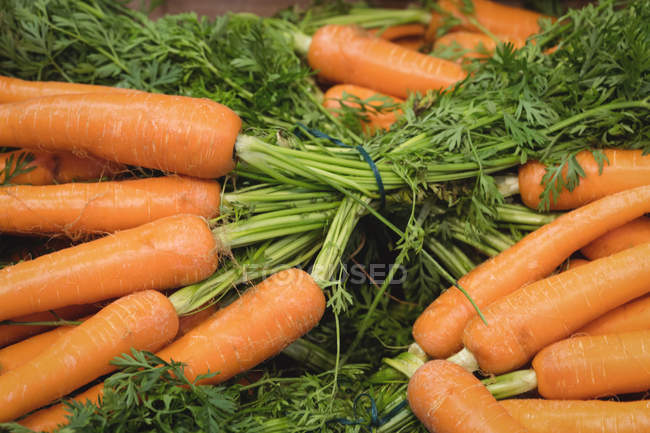 Close-up of fresh carrots in supermarket display — Stock Photo