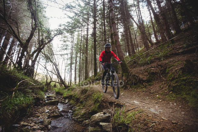 Front view of mountain biker riding on trail by stream in forest — Stock Photo