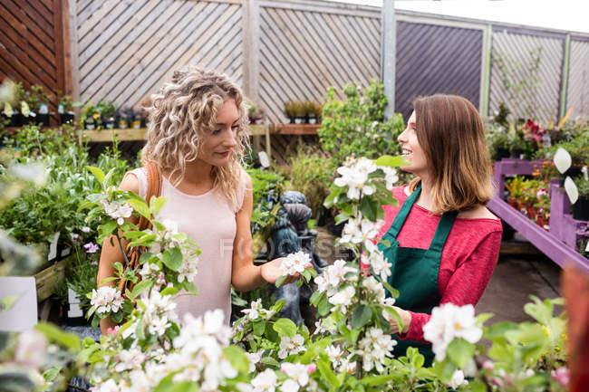 Женщина-флористка разговаривает с женщиной, которая покупает растения в садовом центре — стоковое фото