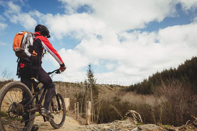 Задній вид байкер їзда на гірських велосипедів — стокове фото