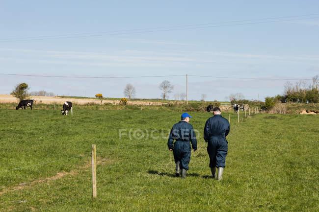 Visão traseira de trabalhadores agrícolas andando no campo gramado contra o céu — Fotografia de Stock