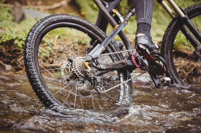Низький розділ велосипедиста їзда в потік при лісів — стокове фото