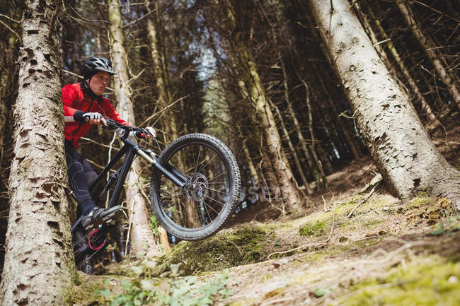 Low angle view of mountain biker jumping with bicycle in woodland — Stock Photo