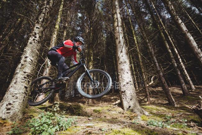 Motociclista da montanha saltando com bicicleta na floresta — Fotografia de Stock