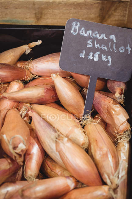 Close-up of banana shallot in basket at supermarket — Stock Photo