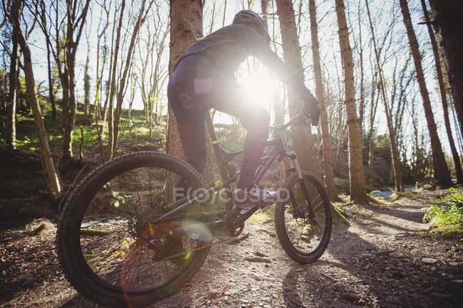 Montanha motociclista andando na estrada de terra na floresta durante o dia ensolarado — Fotografia de Stock