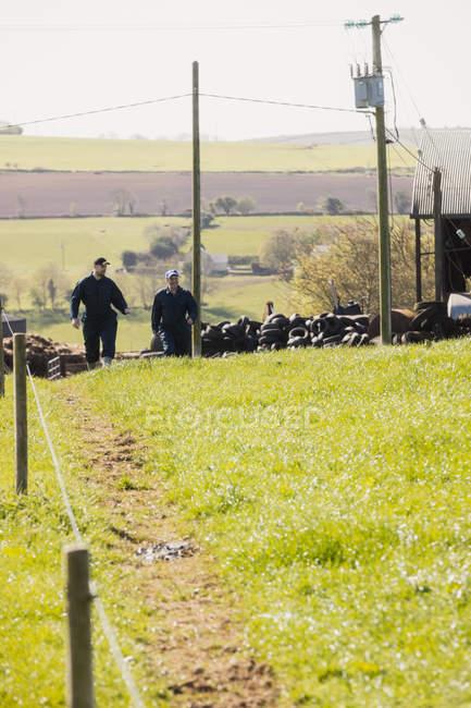 Trabalhadores rurais caminhando no campo gramado no dia ensolarado — Fotografia de Stock
