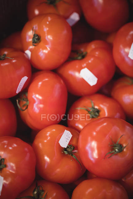 Close-up of fresh tomatoes in supermarket — Stock Photo