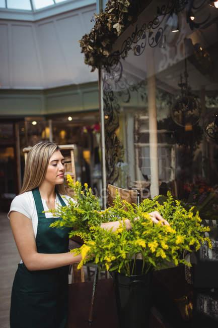 Жіночий флорист організації квіти у вазі на її квітковий магазин — стокове фото
