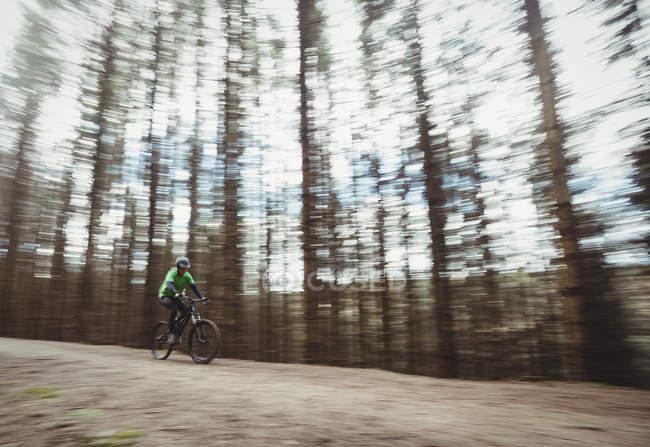 Гора байкер їзда по грунтовій дорозі проти дерева в лісі — стокове фото